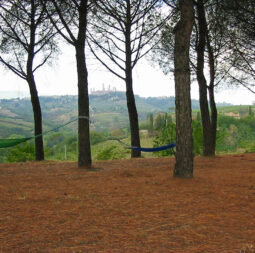 swing in the hammock in the shade of the pine forest looking at the medieval landscape of San Gimignano