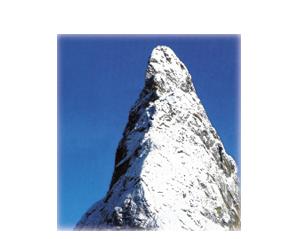 SERGIO IL PATRIARCA ONLUS NON-PROFIT FOUNDATION
